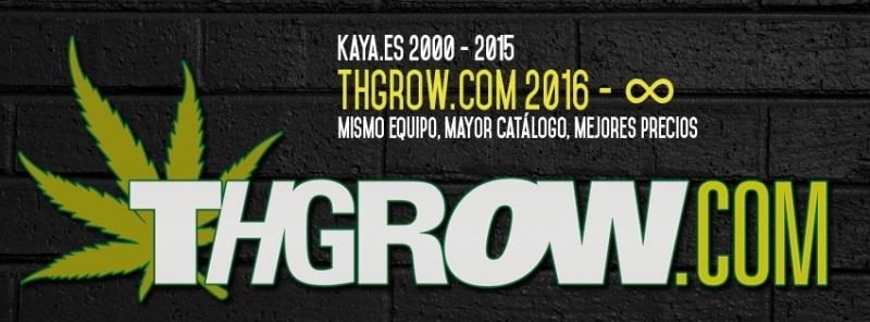 THGrow, apresentamos nosso novo logo.