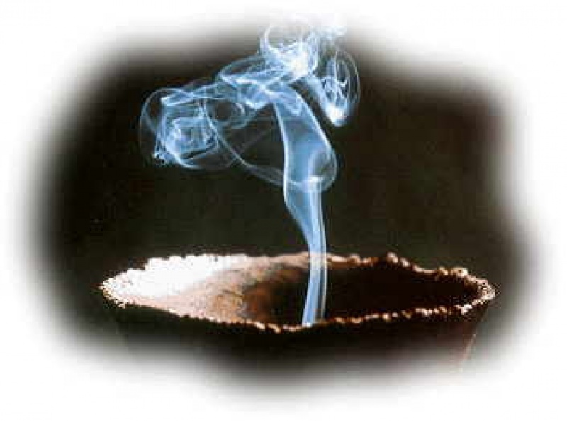 A cultura do incenso