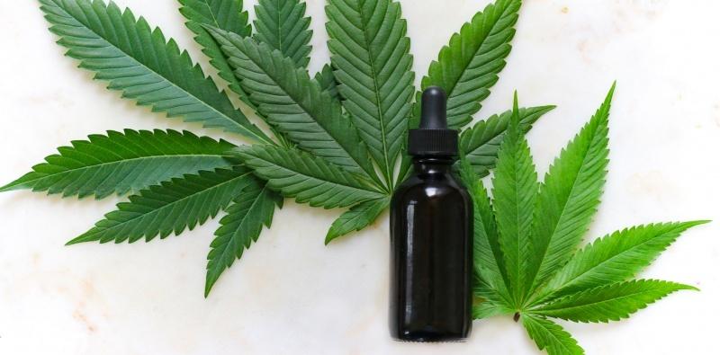 15 de Noviembre, celebra con THGrow el Día Internacional de la Marihuana Medicinal.