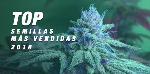TOP 10 2018: las semillas de marihuana más vendidas