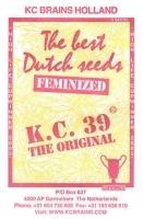 K.C. 39 Feminizada