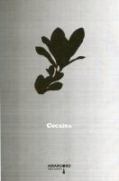 Cocaína, Ed. Amargord