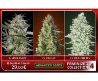 Feminized Collection no.4 Feminized
