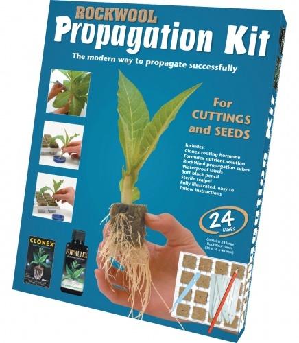 Rockwool Propagation Kit