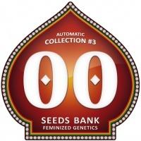 Automatic Collection no.3 Feminizada
