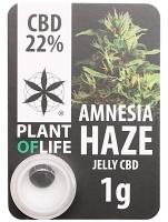 Plant of Life 22% CBD Hash (1 gram)