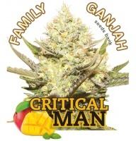 Critical Man Feminizada