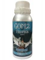GOM2 Tropics