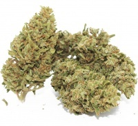 MariaLight Lemon Juice High CBD Cannabis