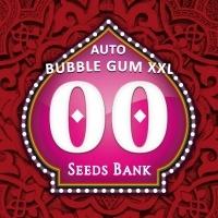 Auto Bubble Gum XXL Feminizada