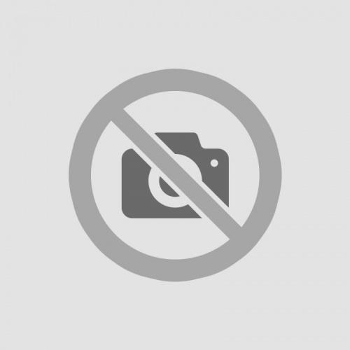 Gelato 33 Fast Feminized