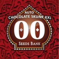 Auto Chocolate Skunk XXL Feminizada