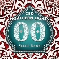 Northern Lights CBD Feminizada