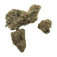 Cannabis Alto CBD Cerbederos Indoor (3 gramos)
