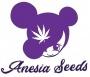 Anesia