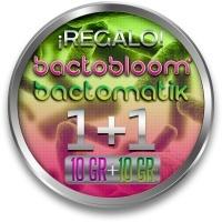 1 Bactohemp + 1 Bactobloom