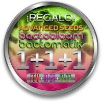 1 Feminizada ADVANCED SEEDS + Bactohemp + Bactobloom