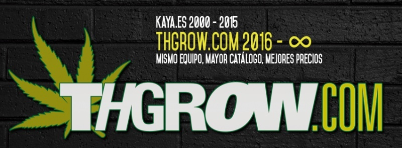 THGrow, introducing our new logo.